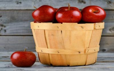 Operaciones culturales y recolección de frutas