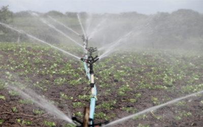 Operaciones auxiliares de riego, abonado y aplicación de tratamientos en cultivos agrícolas